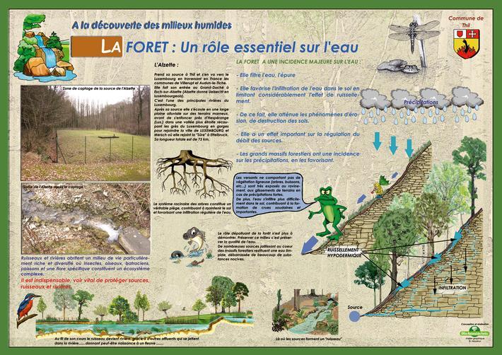 Panneau pédagogique : à la découverte des milieux humides