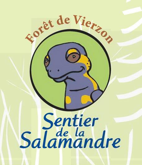 Bienvenue sur le sentier de la Salamandre en forêt domaniale de Vierzon