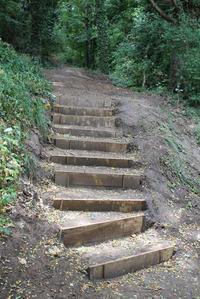 Escalier menant à la Tour observatoire depuis l'arboretum