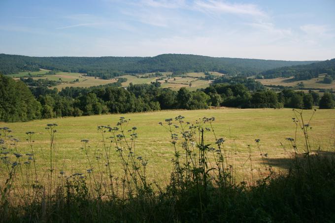 Paysage de vallons et plateaux en Haute-Marne, le département de l'eau et des forêts (commune de Larivière-Arnoncourt – forêt domaniale de Morimont)