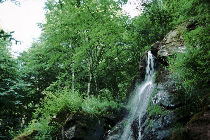 Au Saut du Gouloux, le Caillot, affluent de la Cure, dévale une falaise granitique de 10 m de haut (commune de Gouloux, Nièvre)