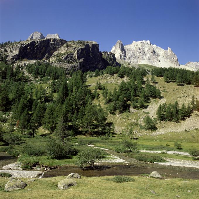 Mélèzin dans la vallée de la Clarée (Hautes-Alpes)