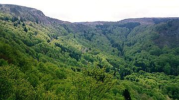 Entre la chaîne des Puys et le massif des Monts Dore, le plateau de Guéry dévoile une vue imprenable sur ces deux sites volcaniques (Auvergne)