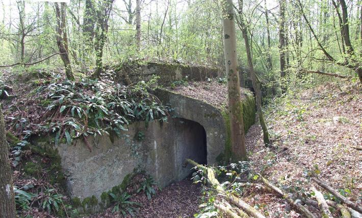 Des structures construites telles que les abris bétonnés demeurent reconnaissables (forêt domaniale de Notre-Dame, Seine-et-Marne, 2014)