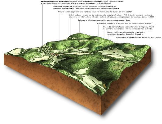 Exemple de bloc diagramme 3D