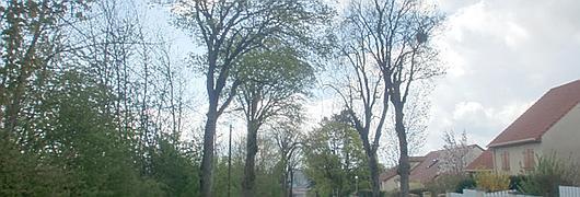 Rue de Vic, à Lunéville