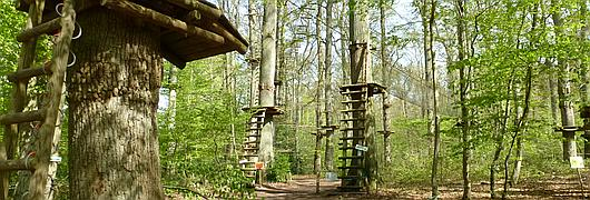 Le parcours est situé en forêt domaniale de Compiègne