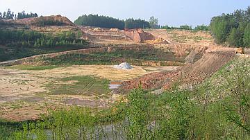 Les Pélobates bruns peuvent occuper d'anciennes carrières ou sablières