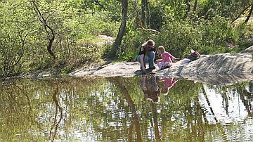 La Mare de Franchard : un site propice à la détente, forêt domaniale de Fontainebleau