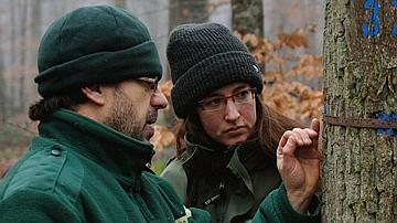 RENECOFOR: A scientific observatory, people observing the forest