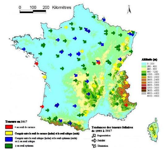 Carte du niveau moyen de l'alimentation foliaire en azote (en 2005) et tendance (de 1993 à 2005), dans les peuplements du réseau RENECOFOR