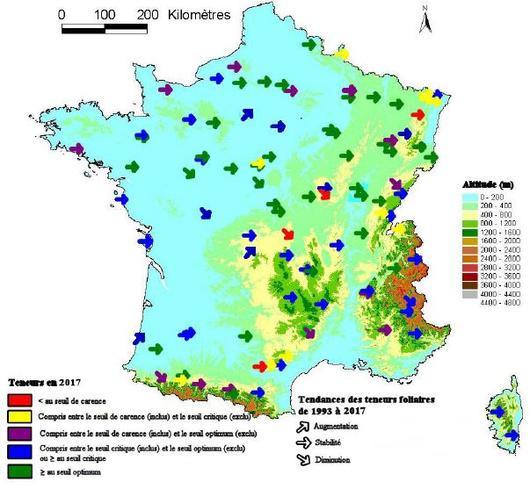 Carte niveau moyen de l'alimentation foliaire en magnésium (en 2005) et tendance (de 1993 à 2005), dans les peuplements du réseau RENECOFOR