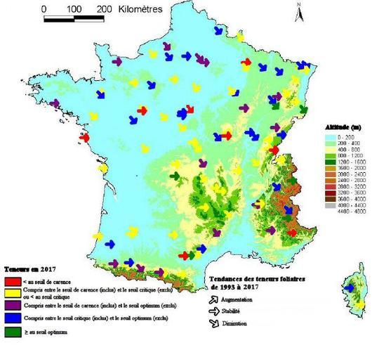 Carte du niveau moyen de l'alimentation foliaire en phosphore (en 2005) et tendance (de 1993 à 2005), dans les peuplements du réseau RENECOFOR