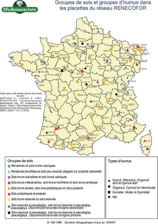 Groupes de sols et groupes d'humus dans les sites du réseau RENECOFOR (1993 - 1995)