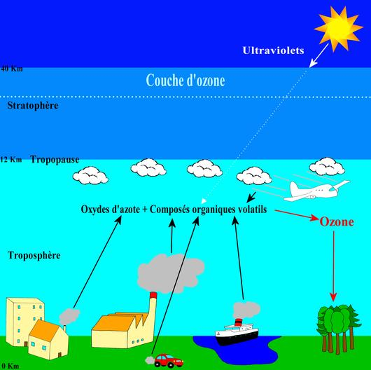 La formation de l'ozone dans la troposphère